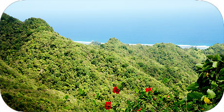 >>> mountain ridge leads down to the ocean / photo © cookislands.com